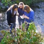 Ökologieexkursion_Abi 12 EZW (Foto: BKBB)